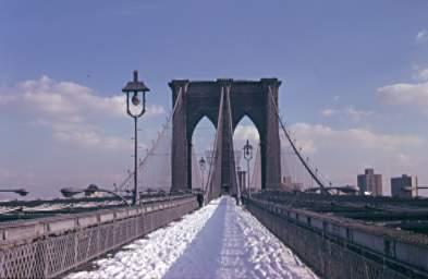 Image Result For New York Brooklyn